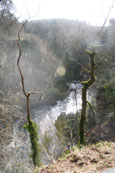 Photograph of the Gorge at the Reekie Linn on the River Isla in Angus, Scotland