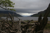 Loch Maree, Wester Ross, Scotland