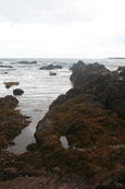 Rock Pools beside Coldingham Beach near to St Abbs in the Scottish Borders, Scotland